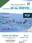 Copos de Nieve 2010 - Nro 27