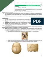 03   Sistema Articular.pdf