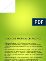 bosque-del-pacifico.pptx