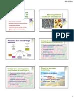 usosbenficosdelosmicroorganismosenalimentos-101116124043-phpapp02