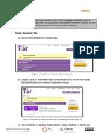 Plantilla Tor (1)