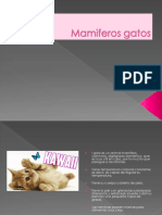 Mamiferos gatos.pptx