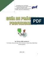 GUÍAPRÁCTICAPROFESIONALII.pdf