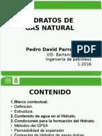 HIDRATOS DE GAS PARRA.pptx