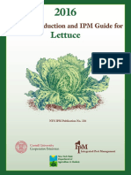 2016 Org Lettuce NYSIPM