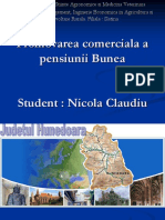 Pensiunea-Bunea Nicola Claudiu