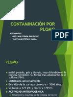Contaminacion Por Plomo Exposicion
