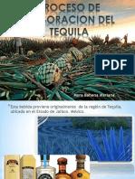 Reactores Para Producción de Tequila