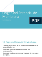 004 Origen Del Potencial de Membrana (1)