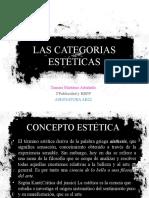 CATEGORÍAS ESTÉTICAS
