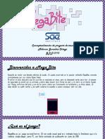 pitch pdf 00