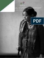 China Social Enterprise Report 2012 - Executive Summary.pdf