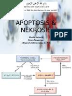 APOPTOSIS & NEKROSIS.pptx