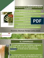 Esparrago[1].pptx