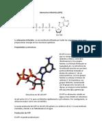 Adenosina trifosfato