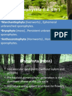 Byrophyta & Filicinophyta