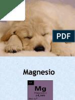 3.magnesio