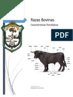 Introducción Razas bovinas.docx