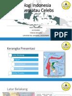 GEOLOGI INDONESIA SULAWESI