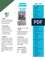 Poster Licence Academique Genie Chimique (1)