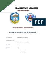 Informe de Practicas I-final