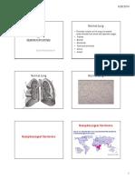 Pathology Paru Azham Handout