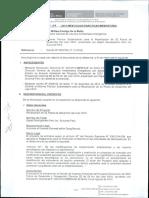 matriz importancia (proyecto petrolero).pdf