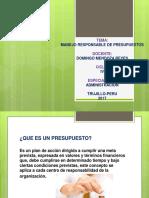 DIAPOS-DE-PRESUPUESTO.pdf