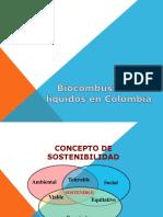PRESENTACION BIOCOMBUSTIBLES (Copia en Conflicto de Virgilia Ortega Iriarte 2017-03-18)