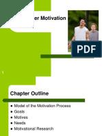 3 Consumer Motivation