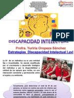 Discapacidad Intelectual (1)