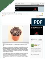 Propagating Succulent Leaf Cuttings.pdf