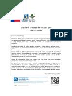 Matriz Labores Macro Zonas2017
