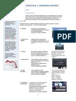 201408972-Unidad-Didactica-1-Numeros-Enteros.pdf