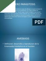 4 Entero Parasitosis-2