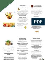 61007104-Alimentacion-Saludable-triptico.docx