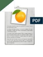 texto expositivo naranja