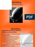 02- Modificaciones Gravídicas
