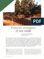 cultivo_pistachero_2008