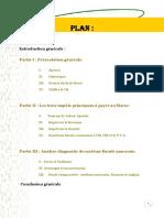 Rapport Fiscalitc3a9 Marocaine1
