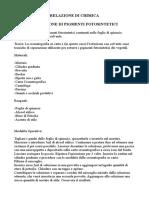 Relazione Estrazione Pigmenti Fotosintetici