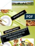 FORMALIZACION  Krunch S.R.ppt