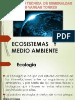Ecossitema y Medio Ambiente