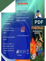 FOLLETO incendios-forestal.pdf