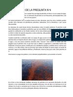 DESARROLLO DE LA PREGUNTA N.docx