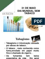 dia mundial do tabaco