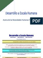 Desarrollo a Escala Humana 14.ppt