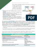 Patologia Etiologia y Adaptacion Celular