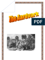 Aardvark Mini Fact Book, by Donnette E Davis, St Aiden's Homeschool, South Africa