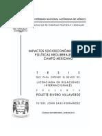 Impacto de las políticas neoliberales en el campo mexicano